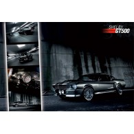GN0317 FORD SHELBY MUSTANG GT500