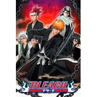 PP34379 BLEACH (CHAINED)
