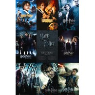 FP2698 HARRY POTTER COLLECTION