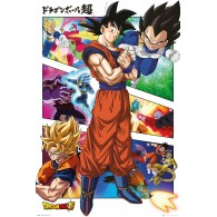 FP4916 DRAGON BALL SUPER PANELS