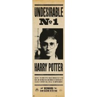PPGE8031 HARRY POTTER UNDESIRABLE N°1